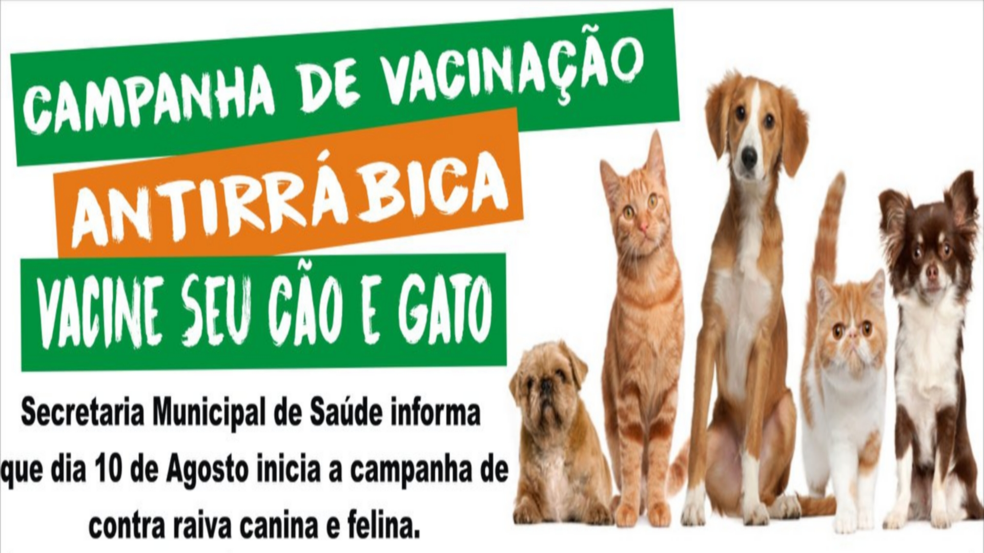 """ATENÇÃO DONOS DE ANIMAIS DOMÉSTICOS, VACINEM SEU """"BICHINHO"""" !!!"""